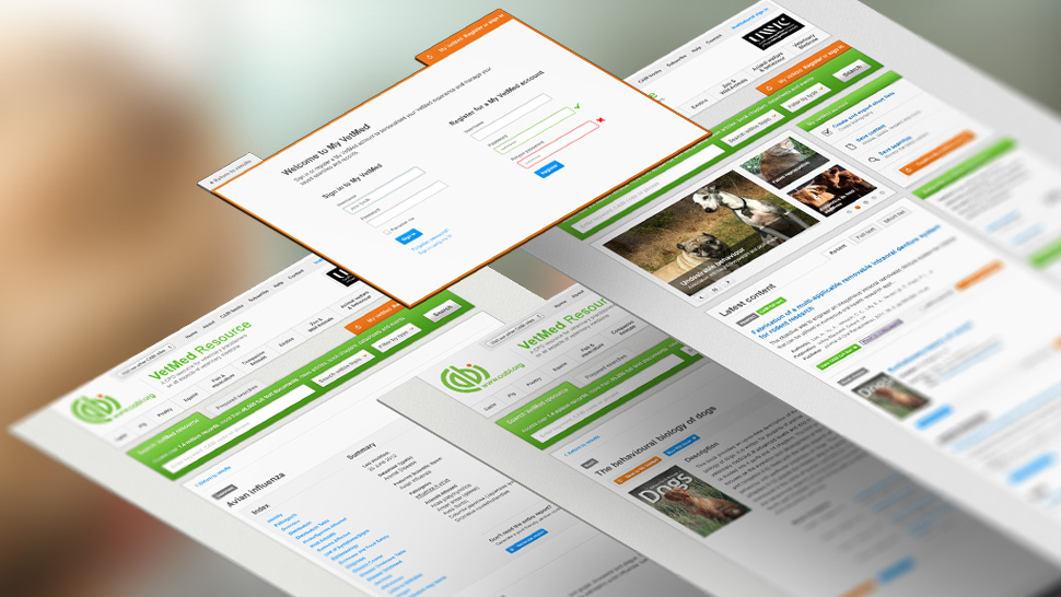 User Experience, Mobile Site, User Interface, Digital Consultancy, Pattern Library
